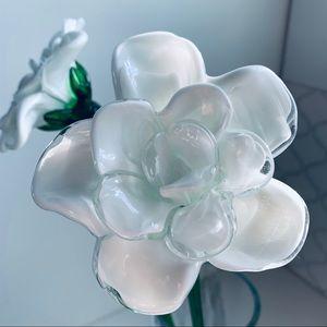 HandBlown Glass Flowers Clear & White Opaque Glass